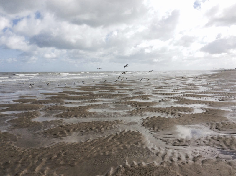 Eleni Debo Seaside